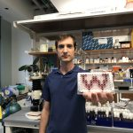 Photo of David Loehlin in his lab