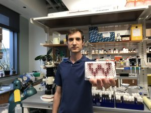 A photo of David Loehlin in his lab